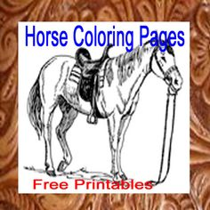 Free printable coloring pages with cowboys, cowgirls, rodeo events and horses. Get western and rodeo crafts, activities and games including rodeo bingo. Horse Coloring Pages, Colouring Pages, Coloring Sheets, Free Coloring, Rodeo Crafts, Rodeo Events, Cowboy Images, Parent Night, Free Printable Coloring Pages