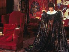 Harry Potter & The Sorcerer's Stone invisibility cloak