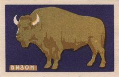 russian animal matchbox label