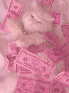 Visionary Pink Gumball Kitty with magical glitter … … There may be a wallpaper. Visionary Pink Gumball Kitty with magical glitter … – aesthetic Animals Pink Love, Pretty In Pink, Pretty Kitty, Tout Rose, Bad Girl Aesthetic, Cat Aesthetic, Aesthetic Grunge, Aesthetic Vintage, Aesthetic Women