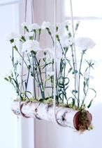 DIY Floating Carnations Great what flowers do - Frühling. Deco Floral, Arte Floral, Floral Design, Ikebana, Air Plants, Indoor Plants, Deco Nature, Art Nature, Carnations