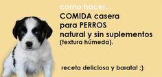 Como hacer comida casera para perros recetas naturales sin suplementos. Mira esta videoreceta de comida húmeda para perro. Es sana, fácil, sabrosa y barata!
