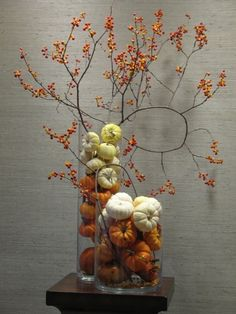 Baby Pumpkins and Bittersweet Orange Berries. Love the contemporary feel of this arrangement.