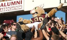 Boko crowd surfs with fans!