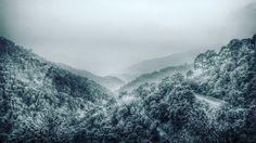 Scenic beauty of nature  #nature #scenic #kasoli #himachalpradesh #asia #india #himachal #mountains #tree #forest #beautiful #hills #naturelovers #peace #travelingram #travelislife #travelling #holidays #vacation #queenofhills #shimla #dailydiary #rootsofindia #incredibleindia