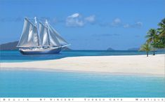 Favorite Grenadines Charter -  ♥ Freindship Rose - Day Tours & Private Charters Through the #Grenadines - Bequia, St Vincent, Tobago Cays, Mustique