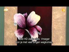 John Sokoloff ( Kroshka Waltz ) - Fractal flowers - - YouTube