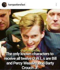 Barty Crouch Jr, Harry Potter Tumblr, David Tennant, Divergent, Narnia, Merlin, Hunger Games, Sherlock, Entertainment
