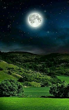 Moonlight am very beautiful 🙂 Moon Moon, Moon Rise, Blue Moon, Beautiful Moon, Beautiful Places, Beautiful Pictures, Good Night Beautiful, Good Night I Love You, Shoot The Moon
