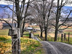 Country road (Pennsylvania) by Lianne Eaton Cook cr.c.