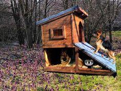 cuccia coibentata per cani - Cerca con Google