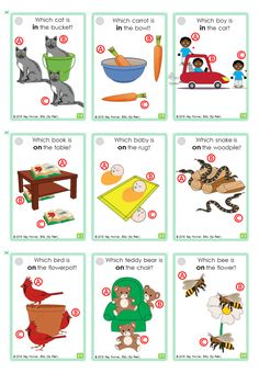 Basic CONCEPTS Card Deck: 72 spatial concept cards include: in : on : under : up : down : top : bottom : in front : behind : next to : between : inside : outside. Speech Language Therapy, Speech And Language, Speech Therapy, Sign Language Basics, Sign Language Phrases, Language Lessons, Deck Of Cards, Card Deck, British Sign Language