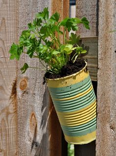Soup can Herb Garden from ~ Such a cute idea.