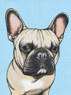 Custom Dog Painting of a French Bulldog by The Dog Painter , Jeroen Teunen. Wraps, Sad Faces, Dog Paintings, Vintage Music, Couple Art, Dog Art, I Love Dogs, Bulldogs, Art Girl