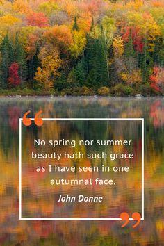 John Donne  - CountryLiving.com