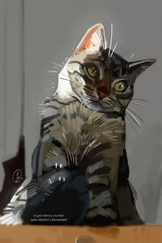 A light study painting of my small child, pulled out of February's Boston Cream Patreon package! It had been a while since I sat down and painted a fluff :L If you'd like to gain early access to pieces such as these, including exclusive studies and. Animal Sketches, Animal Drawings, Cool Drawings, Art Sketches, Art And Illustration, Illustrations, Warrior Cats, Cat Drawing, Pretty Art