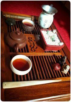 Tea & Succulents