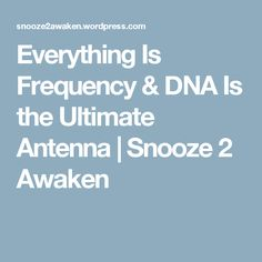 Everything Is Frequency & DNA Is the Ultimate Antenna | Snooze 2 Awaken