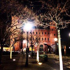 Porte palatine Torino