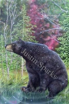 One of my favorite artists, I got to watch him paint part of the bear with a brush that I swear had only one bristle. Amazing!