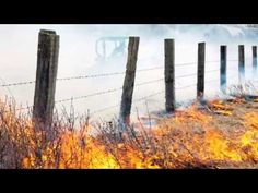 What happens if I get arrested for arson in Las Vegas, Nevada? Laws & penalties - YouTube