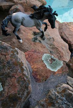 "Breyer Model Horse, ""Nokota"".  Galloping down the decorative rockfall next to my pool."