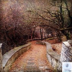 "CONGRATULATIONS!   World Union|GREECEDaily Feature   November 23 2015  PHOTO by - @bellaki15   LOCATION - ZAGOROCHORIA Ioannina Epirus -  GREECE  Selected by - @diokaminaris   Main account @world_union  Always tag #wu_Greece and #worldunion.  The ""Photo of the Day"" must have been taken in Greece so please write the location of the picture and Good luck!   NEW HASHTAG  #wu_Greece15  on your older or Re-tagged shots!   visit @superhubs { @aelfotografo \ @art_pure \ @adgujral \ @super_africa }…"