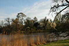 Lednice_park Parks, Country Roads, Gardens, Mountains, Nature, Travel, Naturaleza, Viajes, Outdoor Gardens