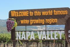 Napa Valley - Welcome to the world famous wine growing region! #napavalley #winecountry