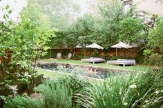Outdoor swimming with umbrellas, seating, and plants