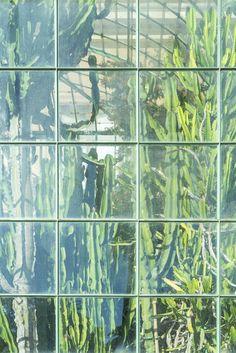 JOELIX.com | Botanical Garden in Rome #botanicalgarden #roma #ortobotanico #rome