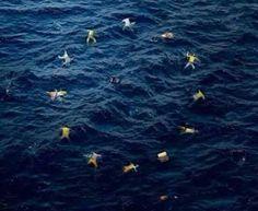L'Europe selon Bansky. L'Europe qui laisse mourir des milliers d'êtres humains.....