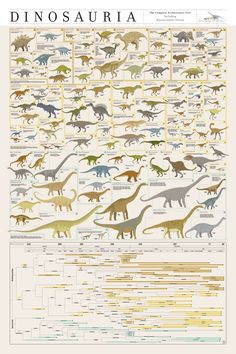 Dinosauria Poster Dinosaur Posters, Dinosaur Art, Dinosaur Illustration, Jurassic Park World, Extinct Animals, Prehistoric Creatures, Natural History, Animal Drawings, Art Drawings