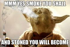 25 Seriously Funny B 25 Seriously Funny Beer Memes Funny People Quotes, Super Funny Quotes, Funny Quotes For Teens, Funny Memes, Funny Sayings, Life Humor, Man Humor, Humor Humour, Yoda Quotes