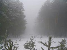 Dark Paradise, Dark Places, Snow, Architecture, Winter, Nature, Outdoor, Beautiful, Arquitetura