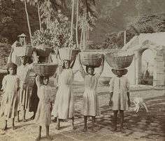 Youthful Toilers on a Lime and Cocoa Estate, Dominica | by The Caribbean Photo Archive