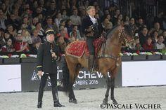 Imádod a barokk lófajtákat? Rajongsz a művészi igényű lovas bemutatókért? Párizsba vágysz? Akkor ezt imádni