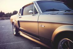 Mustang GT500 Shelby '67