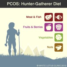 Hunter Gatheres