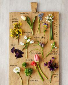 Spring flower guide-- nakedbouquet.com / Kiana Underwood