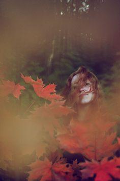autumn laeves by Liubov  on 500px