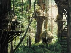 Bright Tree Village was the name of an Ewok tree village on the Forest Moon of Endor. It was home to the Ewok tribe that helped the Alliance. 1000 Awesome Things, Gaia, Cabana, Star Wars Planets, Ewok, Matte Painting, Tree Tops, In The Tree, Places To Go