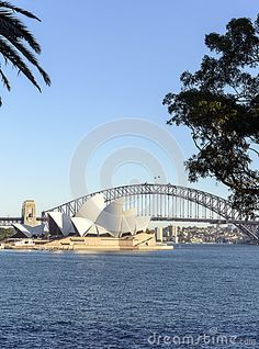 The Opera House and harbour bridge from Mrs Macquaries chair and the Botanic Gardens. Space for text and logos.