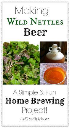 Making Wild Nettles Beer