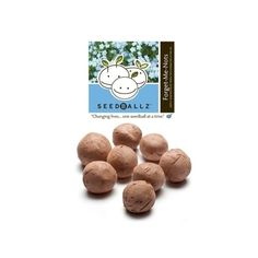 Seedballz Forget Me Not - 8 Pack - Domestic Good