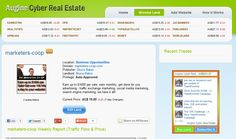 Augine Cyber Real Estate - one of the most unique methods of marketing online.