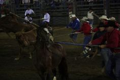 The 11th year for the Optimist's Club Event, the Bulls Only Rodeo, all exciting events, Wild Horse Race, Bull Riding and my personal fave, Mutton Busting, which is when small children 4-7 years old and under 60 pounds ride sheep. Lakeside always come Learn how you can make money from horse racing