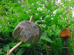 Einladung in unseren Kräutergarten