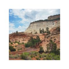 Slick Rock Zion National Park Utah Canvas Print