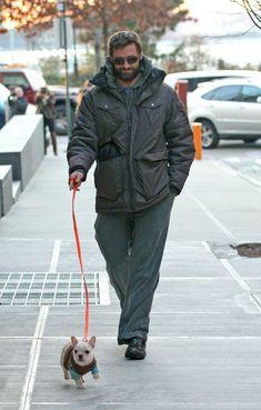 Hugh Jackman and his Frenchie pup Mocha